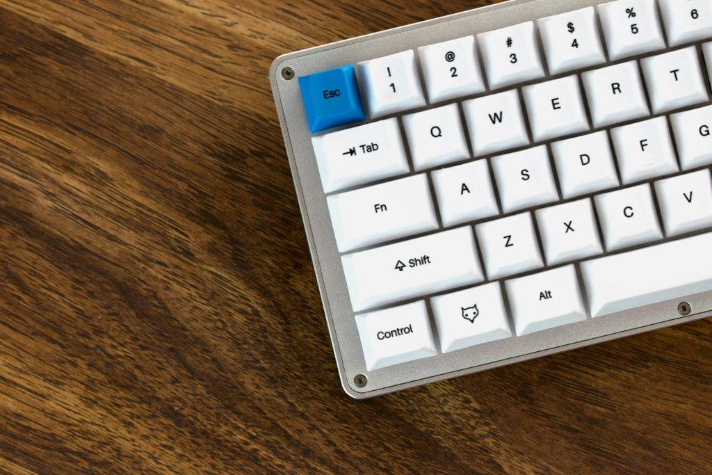 WhiteFox Closeup Photo